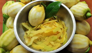 Citrons jaunes de Sorrente et ses zestes prélevés